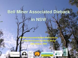 Bell Miner Associated Dieback  in NSW    Bell Miner Associated Dieback Working Group c