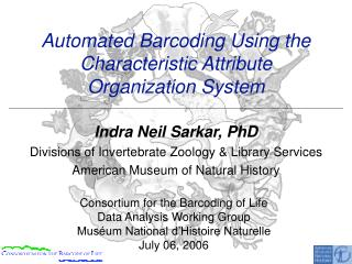 Automated Barcoding Using the Characteristic Attribute  Organization System