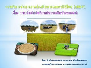 การบริหารจัดการงานส่งเสริมการเกษตรมิติใหม่  ( MRCF)