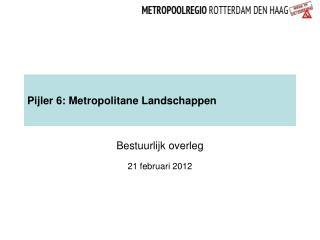 Pijler 6: Metropolitane Landschappen