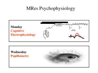 Monday Cognitive  Electrophysiology