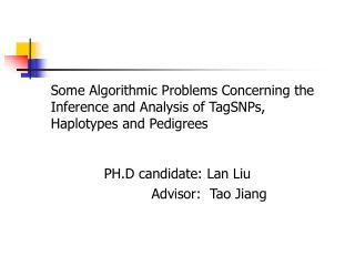 PH.D candidate: Lan Liu