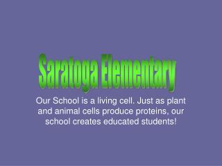 Saratoga Elementary