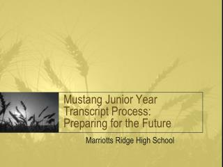 Mustang Junior Year  Transcript Process: Preparing for the Future