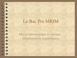 Le Bac Pro MRIM