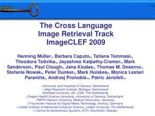 The Cross Language  Image Retrieval Track ImageCLEF 2009