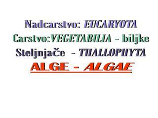 Nadcarstvo:  EUCARYOTA Carstvo: VEGETABILIA  - biljke Steljnjače  -  THALLOPHYTA ALGE -  ALGAE