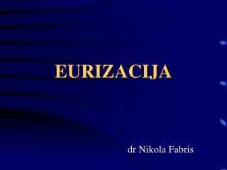 EURIZACIJA