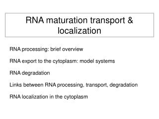 RNA maturation transport & localization