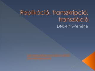 Replikáció, transzkripció, transzláció