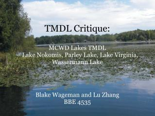 TMDL Critique: MCWD Lakes TMDL – Lake Nokomis, Parley Lake, Lake Virginia, Wassermann Lake