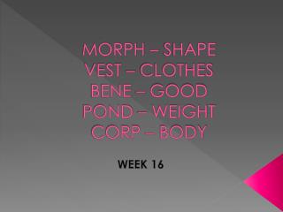 MORPH – SHAPE  VEST – CLOTHES BENE – GOOD  POND – WEIGHT  CORP – BODY