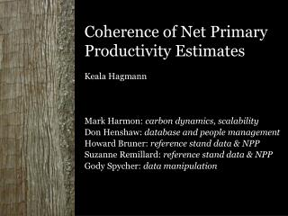 Coherence of Net Primary Productivity Estimates