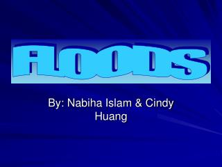 By: Nabiha Islam & Cindy Huang