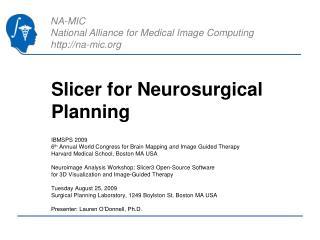 Slicer for Neurosurgical Planning