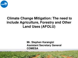 Climate Change Mitigation: The need to include Agriculture, Forestry and Other Land Uses (AFOLU)