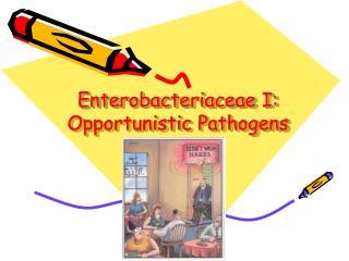 Enterobacteriaceae I: Opportunistic Pathogens