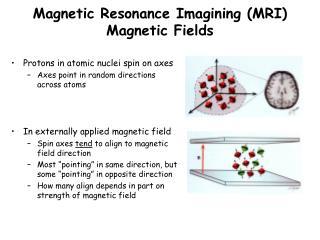 Magnetic Resonance Imagining (MRI) Magnetic Fields