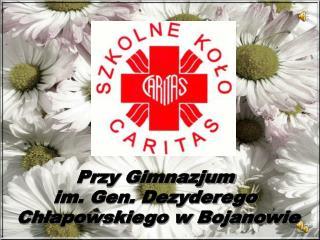 Przy Gimnazjum im. Gen. Dezyderego Chłapowskiego w Bojanowie