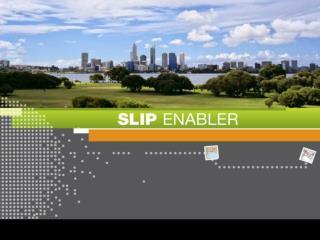 SLIP Enabler NatStats 08 Conference