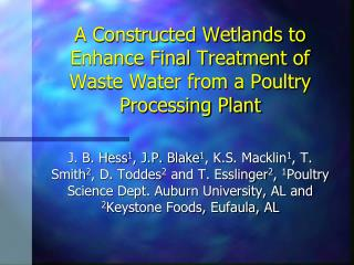 A Constructed Wetlands to Enhance Final Treatment of Waste Water from a Poultry Processing Plant