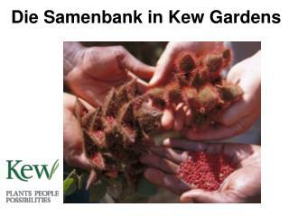 Die Samenbank in Kew Gardens
