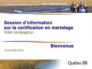 Session d'information sur la certification en martelage Volet compagnon