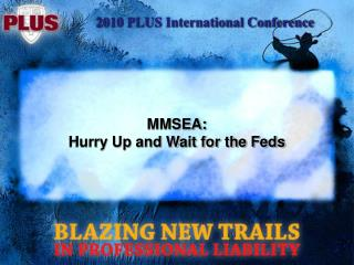MMSEA: Hurry Up and Wait for the Feds