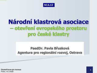 Národní klastrová asociace – otevření evropského prostoru  pro české klastry