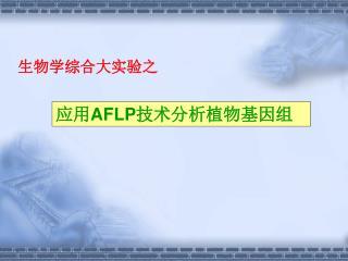 应用 AFLP 技术分析植物基因组