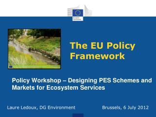 The EU Policy Framework