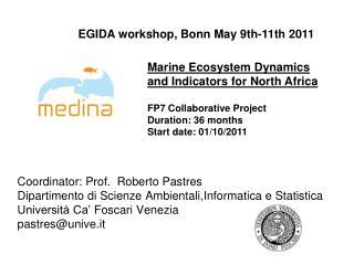 Coordinator : Prof.  Roberto  Pastres Dipartimento di Scienze Ambientali,Informatica e Statistica