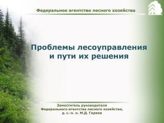 Проблемы  лесоуправления  и пути их решения