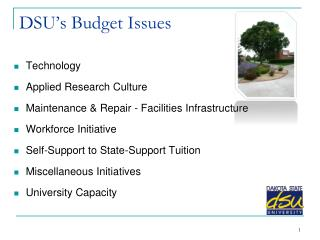 DSU's Budget Issues