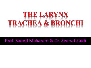 Prof. Saeed Makarem & Dr. Zeenat Zaidi