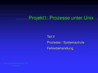 Projekt1: Prozesse unter Unix