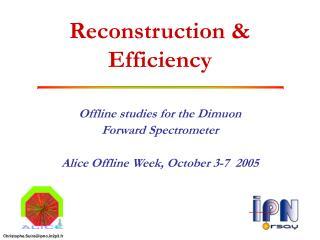 Reconstruction & Efficiency