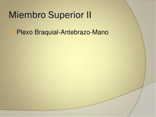 Miembro Superior II