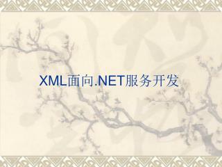 XML ?? .NET ????