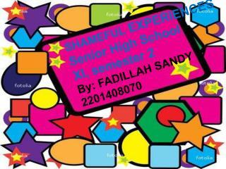 SHAMEFUL  EXPERIENCES Senior High School XI, semester 2 By: FADILLAH SANDY 2201408070