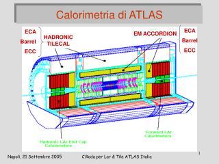 Calorimetria di ATLAS