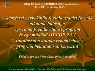 A k pz ssel egybek t tt foglalkoztat si form k alkalmazhat s ga  egy roma foglalkoztat si program   s egy muk do HEFOP-2