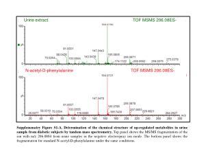 N-acetyl-D-phenylalanine                                                 TOF MSMS 206.08ES-