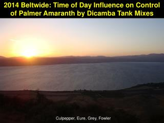 2014 Beltwide: Time of Day Influence on Control of Palmer Amaranth by Dicamba Tank Mixes