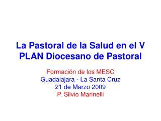 La Pastoral de la Salud en el V PLAN Diocesano de Pastoral
