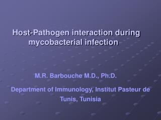M.R. Barbouche M.D., Ph.D.