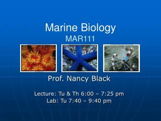 Marine Biology MAR111