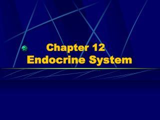 Chapter 12  Endocrine System