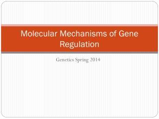 Molecular Mechanisms of Gene Regulation