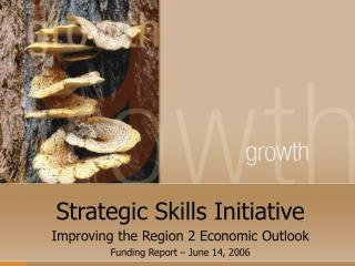 Strategic Skills Initiative